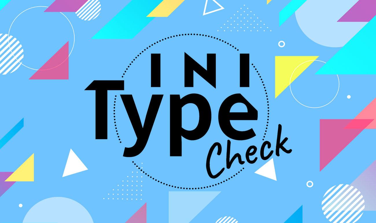 INI Type Check
